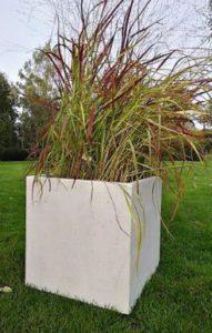 Grassen In Pot.Set Pot Siergras Tuinen Soetemans
